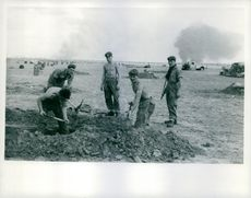 Soldiers of England Army digging in a field.