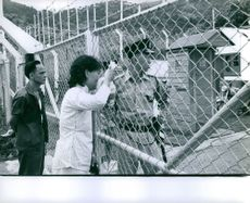 Vietnamese man and woman looking through the guarded fence of a prison camp in Vietnam.