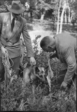 Police Dog Boy led his handler, Officer Kjell Lundgren, the poacher