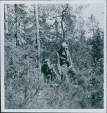 Partisan got caught in the forest after the German occupation in Denmark. 1945
