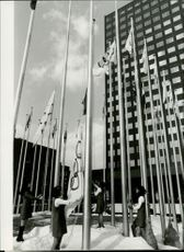 The Olympic flags are hoisted in front of the Olympic Headquarters in Sapporo.