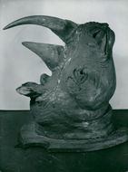Jacket trophy of a three-horned African unicorn at the National Museum