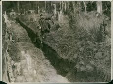 Soldiers standing in a dig in forest and looking at something.