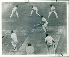 Colin Cowdrey Cricketer with fiery fred.