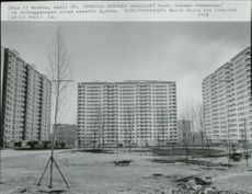 OS in Moscow in 1980. Olympic site just outside of Moscow