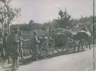 Soldiers walking on road and taking their luggage by cart. 1914