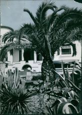 Outside view of Maurice Chevalier's residence.