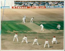 Cricket (1982) new zealand game.