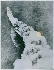 A Japanese transport, victim of a direct hit by a U.S. bomber, sinks in flames in the Western most Aleutians Island.