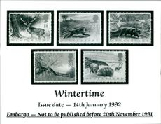 The Wintertime Stamps.