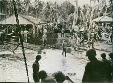 US Forces Land Equipment in Solomons.