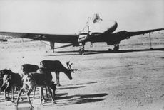 Parked airplane, reindeers on the side.  - Oct 1941