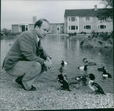 Peter Scott sitting by the duck pond. 1954
