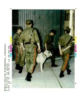 Crime police members armed with whips and a dog patrol.