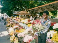 Zimbabwe Salinbury: Flower vendors in harare