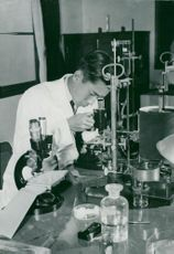 Crown Prince Akihito in his laboratory, kicks in a microscope