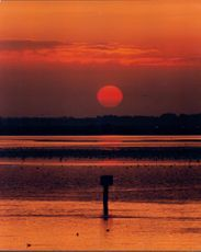 Breydon Water sunset