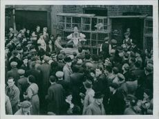 1945 Fatten them up for Christmas. A scene of a duck being auction in club row, watched by a large crowd.
