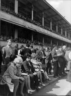 Audience on horse racing