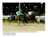 Cigar and Jerry Bailey win the Dubai World Cup