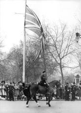 A royal house troop in the front of the parade leading the march.
