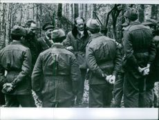 Soldiers standing in the forest.