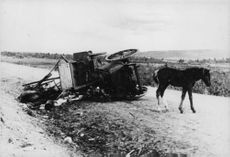 An abandoned fallen horse-pulling cart on the road.