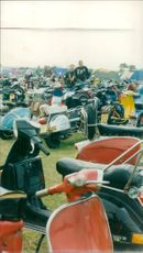 View of scooters in the field.