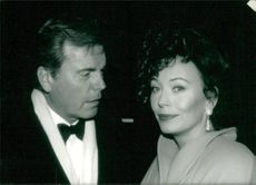 Robert wagner and Lesley ann down.