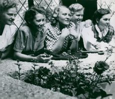 Former folk high school students participate in the celebration of the Sigtuna jubilee