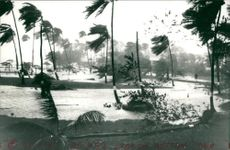 Hurricane Hugo