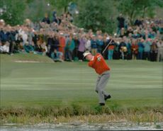 Golf player Joakim Haeggman is very close to striking the ball in the water on the 18th hole at today's last single game in the Ryder Cup 1993