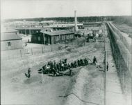 concentration camps.