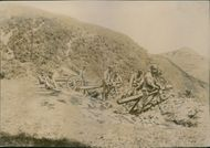 Soldiers standing on trench with their weapons.  1904 Logs nara Tawan in order to deceive the Japanese, which doch in August stormed and took the battery.