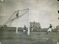 A player has scored a goal and the goal keeper is looking at it helplessly.