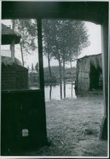 A farm with landed land, sheltered against a possible attack. 1939