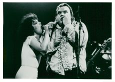 Concert picture on Meat Loaf taken in an unknown game context.