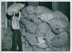 Finnish-Russian War 1939- 1940 Man collecting sacks for donations.