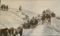 Vintage photo of a Russian retreat in Manchuria during the battle in Mukden. Photo taken in April 1905.