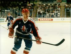 Stephen Cooper (ice hockey).