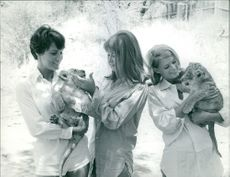 Jacki Ray, Mary Michael and Diame Bond playing with leopard's cubs. 1966