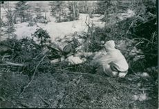 Norge 1940 Norwegian soldiers siting and hidden in the shrubs during the German occupation in Norway.