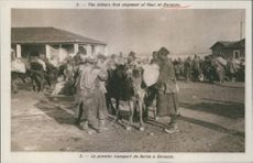 The Allies's first shipment of flour at Durazzo during First World War.