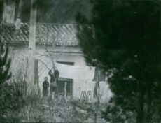 Men tying a banner with tree behind the hut. 1969
