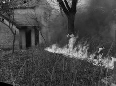 Burning grass flames around the house, in which stirs no more resistance