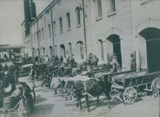 Soldiers gathered in the street while looking their horses with chariot during WWI, 1936.
