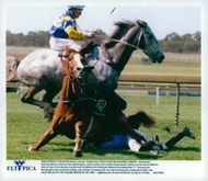 Tenzing with jockeyn Paul Worthington tries to jump over jockey Craig Durden who has fallen with horse Mount Matanlu under the galoppderby at Sandown