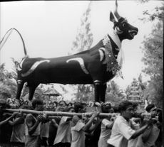 Men carry on their shoulders a big bull idol during a parade in Bali, Indonesia.  - Jan 1963