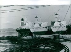 Newly completed bulk carriers in Sand Bay, an arm of the Oslo F jord.