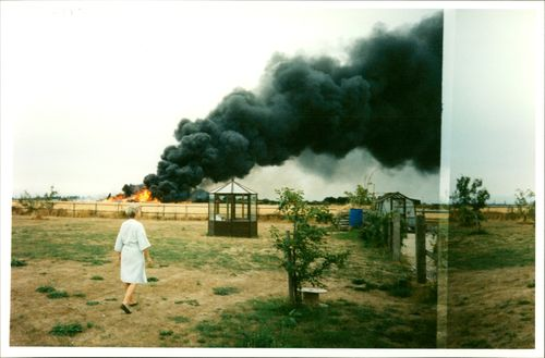 Aircraft crash:mrs barbara entwisle looks out.